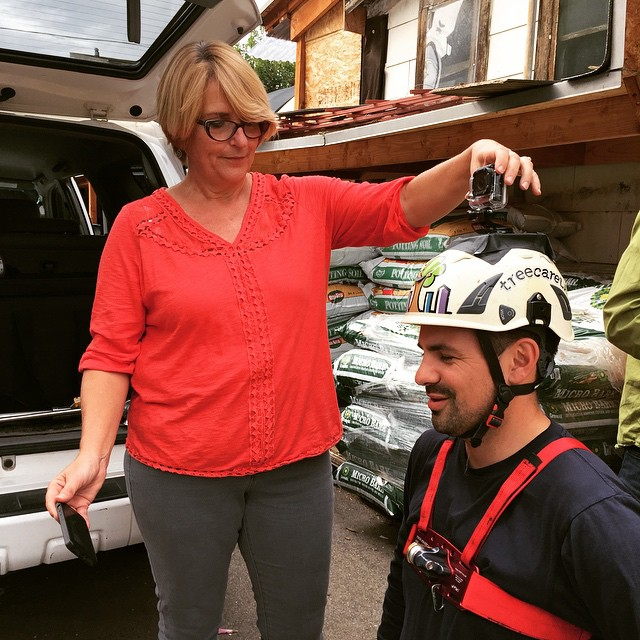 #Producer Marianne Gerdes helps put a #GoPro on #BigTreeHunter Nick Araya's helmet before he climbs a giant floss silk tree at #YamaguchiBonsaiNursery in #LA