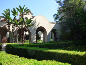 Bird of paradise and boxwood hedges in Alcazar garden