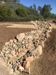 A dry streambed surrounded by mounds directs and collects water in a waterwise garden