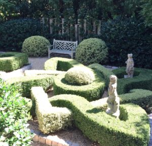 Different colored foliage are the key to creating formal knot gardens.