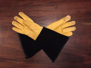 Gloves for catching hawks