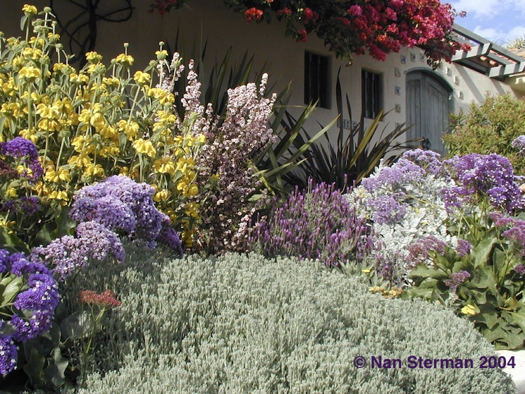 Tips For Successful Waterwise Gardens